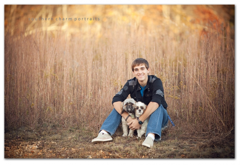 shitzus in senior pictures brown tall grass in background