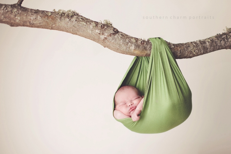 baby hanging from tree branch