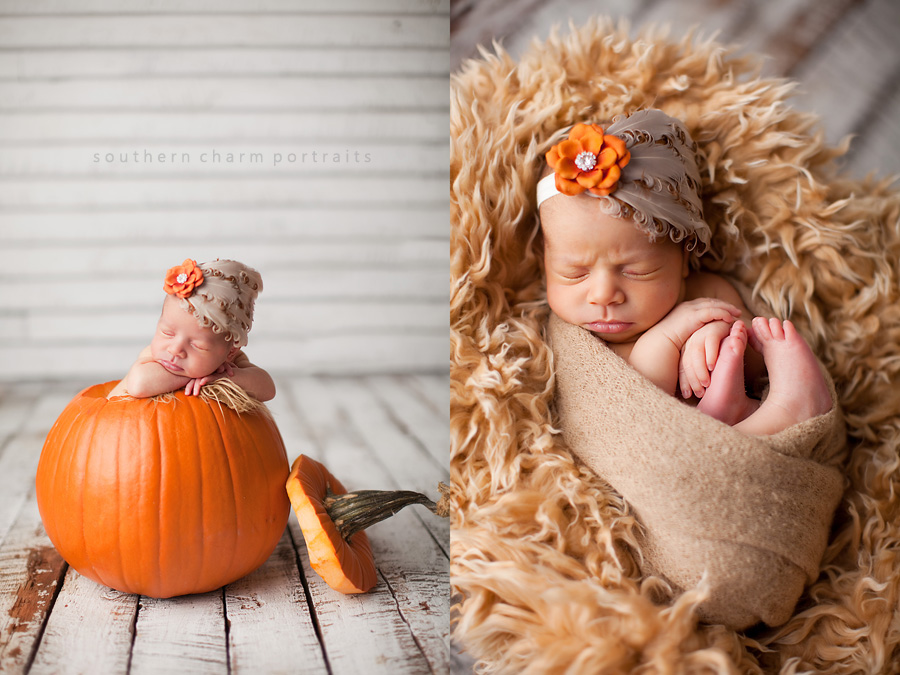 Adelaide claire knoxville newborn photography southern charm portraits