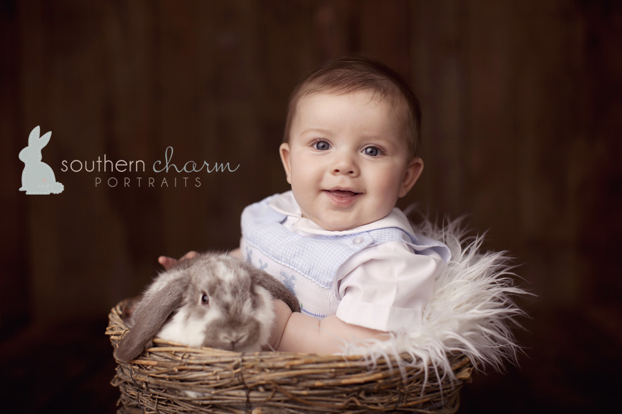 tn baby photographer