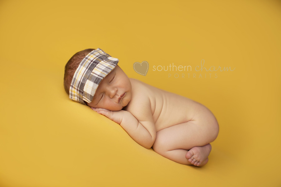 baby portraits in knoxville tn